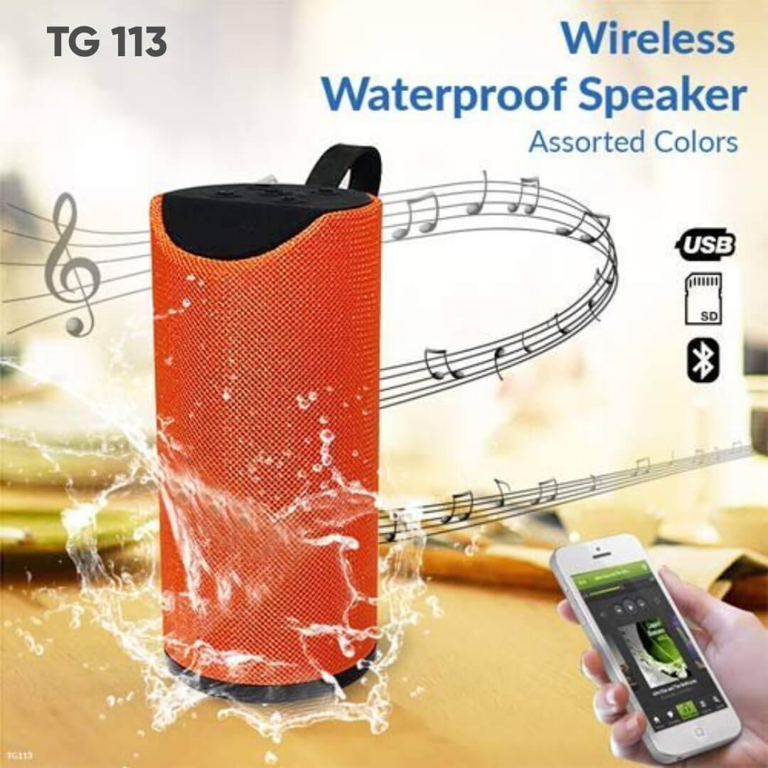 TG 113 Wireless Speaker